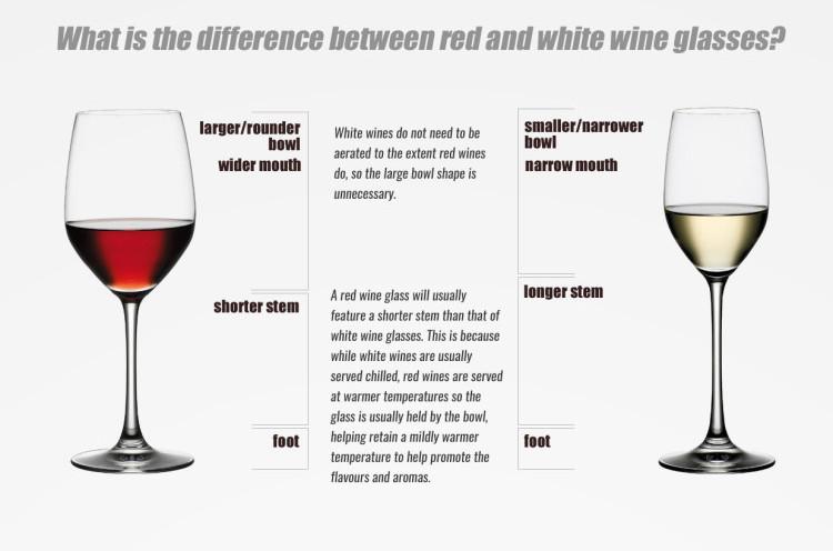imageedit 7 4718985870 - Cách chọn Ly thủy tinh uống rượu Vang phù hợp